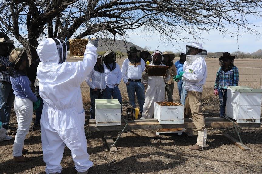 ReZoNation Farm beekeeping class (Credit: ReZoNation Farm)